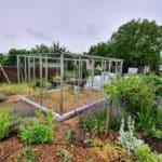 image002 19 150x150 Szklarnia ogrodowa Przeźmierowo