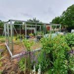 image003 19 150x150 Szklarnia ogrodowa Przeźmierowo