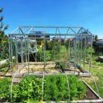 image003 3 150x150 Szklarnia ogrodowa Przyszowice