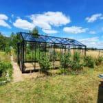image005 10 150x150 Szklarnia ogrodowa Kołomąt