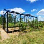 image006 10 150x150 Szklarnia ogrodowa Kołomąt