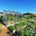 image006 3 150x150 Szklarnia ogrodowa Przyszowice