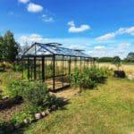 image008 10 150x150 Szklarnia ogrodowa Kołomąt