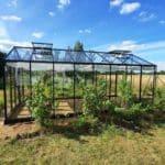 image010 10 150x150 Szklarnia ogrodowa Kołomąt
