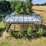 image012 10 150x150 Szklarnia ogrodowa Kołomąt