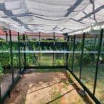 image014 3 150x150 Szklarnia ogrodowa Psary
