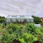 image016 15 150x150 Szklarnia ogrodowa Przeźmierowo