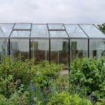 image017 14 150x150 Szklarnia ogrodowa Przeźmierowo