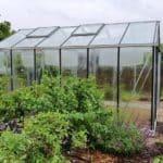 image018 12 150x150 Szklarnia ogrodowa Przeźmierowo