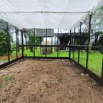 image820 150x150 Szklarnia ogrodowa Jordanów